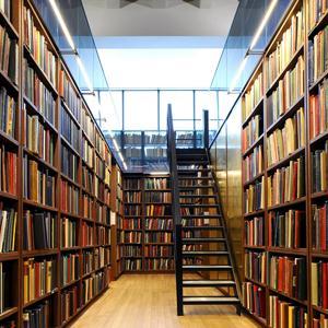 Библиотеки Плесецка