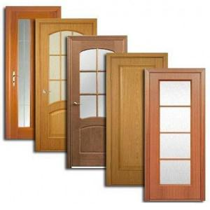 Двери, дверные блоки Плесецка