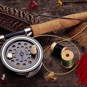 Охотничьи и рыболовные магазины Плесецка